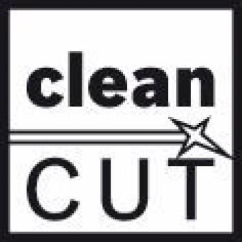 BOSCH Pílový list do priamočiarych píl T 101 BR Clean for Wood